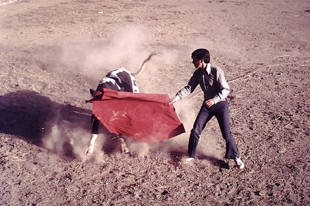 A 1972 photograph of a matador in training.