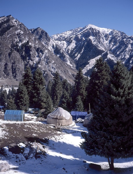Yurt living near the Heavenly Mountains.