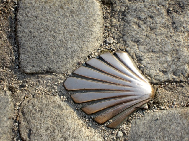 A bronze scallop shell in the footpath in Limoges indicating the pilgrims' way.