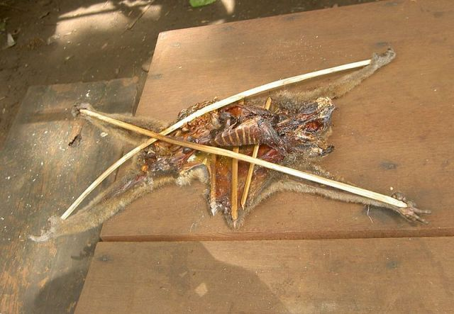 A Loris cut open to dry in the sun. They are commonly dried and sold as traditional medicine. Image credit: Carly Rose Star via Wikipedia.